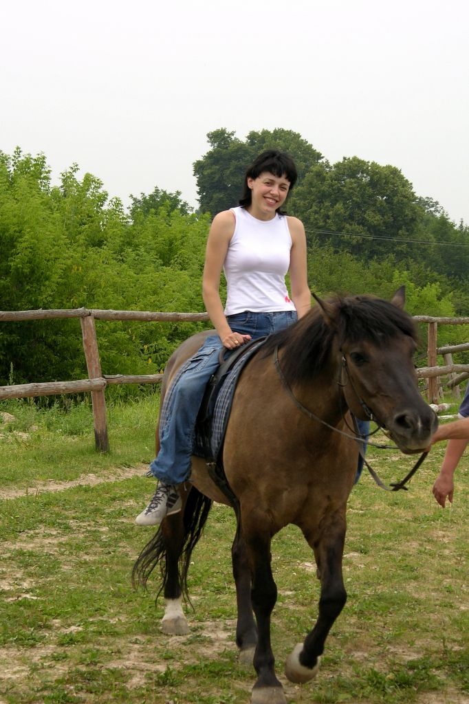 You are browsing images from the article: Informative-resource center of recreational tourism and tourism for disabled