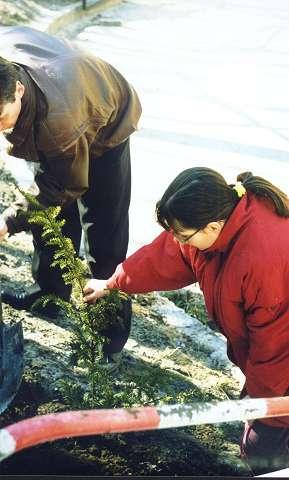 You are browsing images from the article: 'Vides izglītība priekš bērniem invalīdiem'
